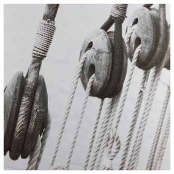 Pulleys Printed Canvas