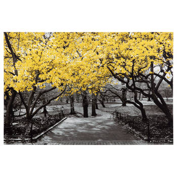 Central Park Printed Canvas with Gel Embellishments