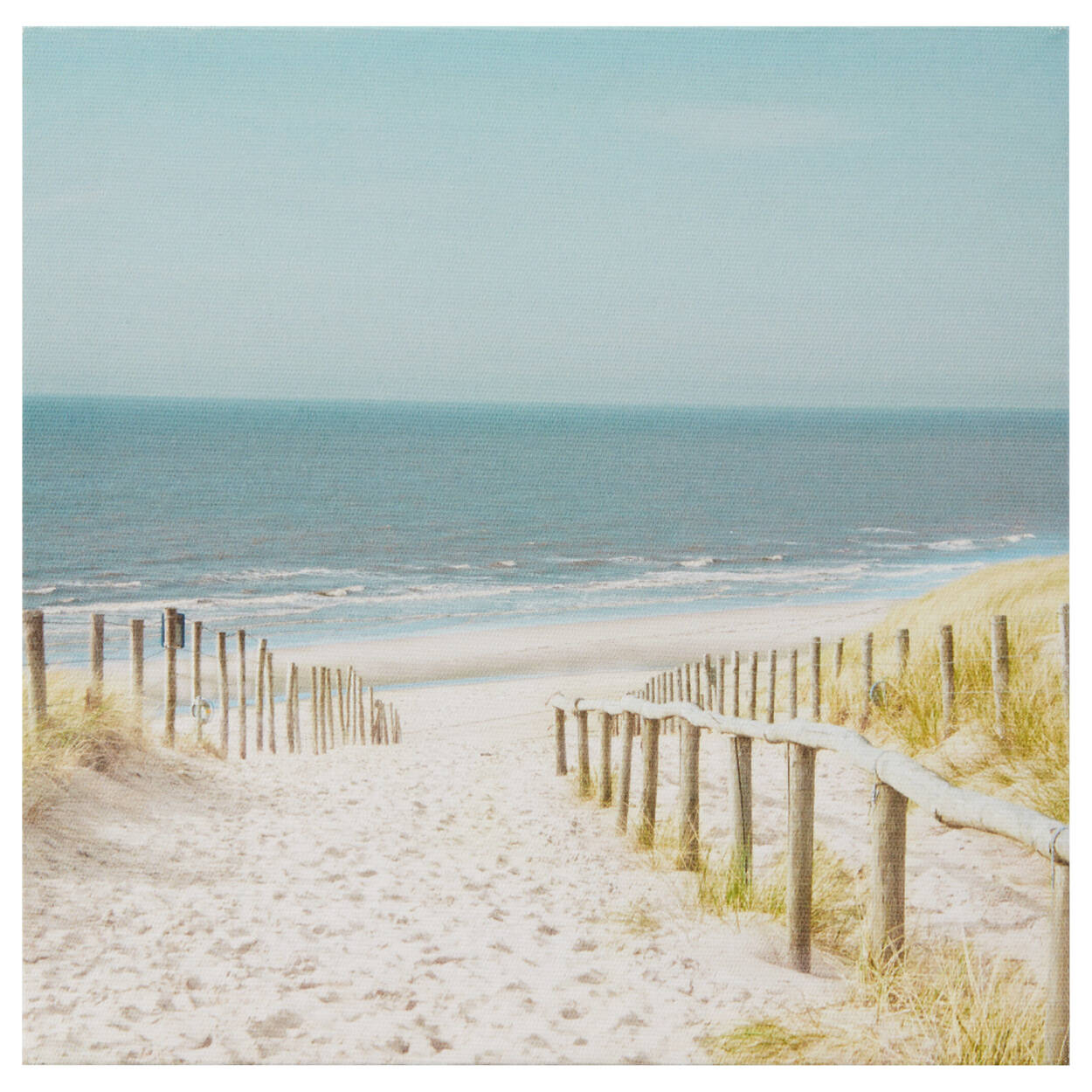 Beach Path Printed Canvas