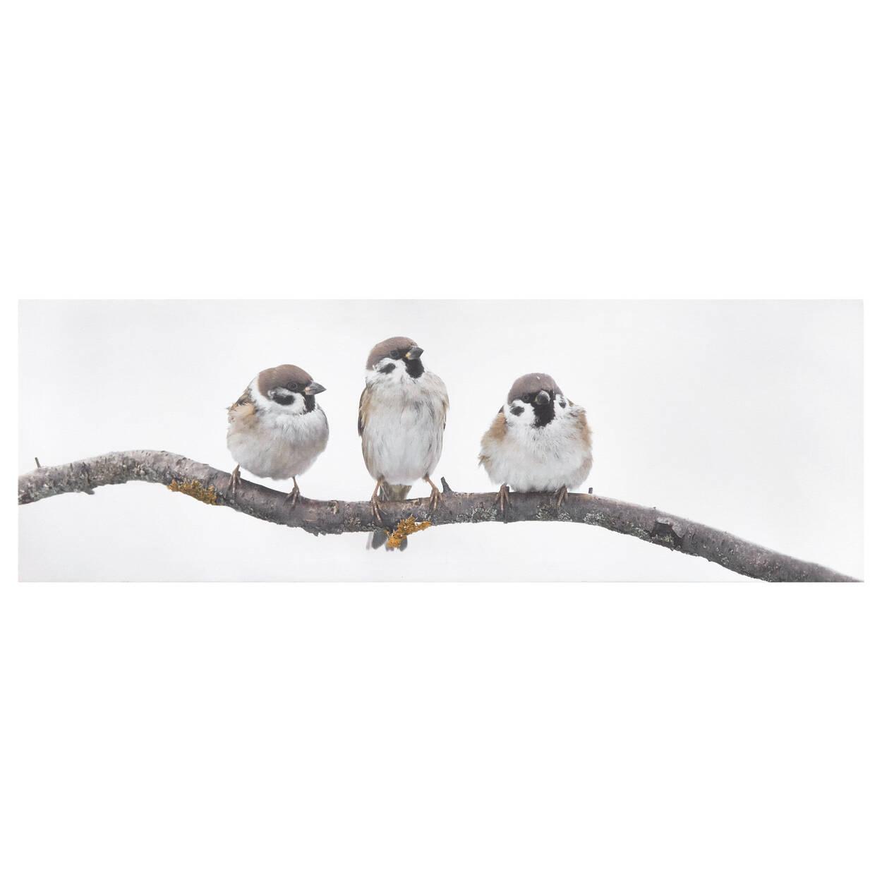 Tableau imprimé trois petits oiseaux perchés sur branche