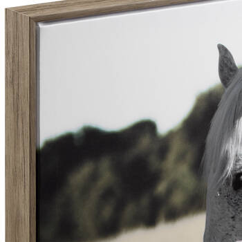 Grazing Horse Framed Printed Canvas