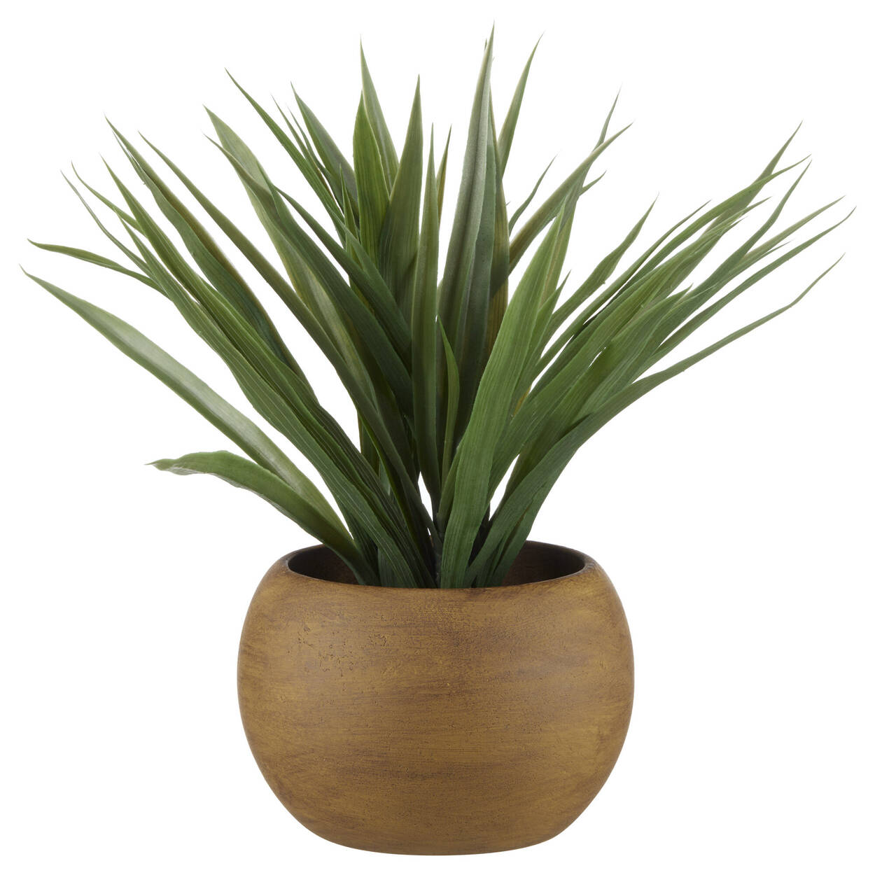 Citronnelle dans un pot en bois