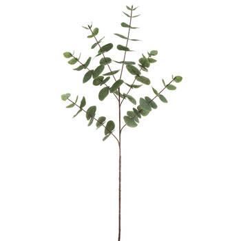 Artificial Eucalyptus Stem