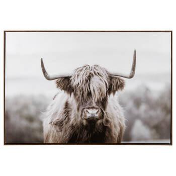 Furry Highland Cow Framed Art