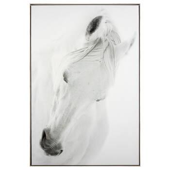 Graceful White Horse Framed Art