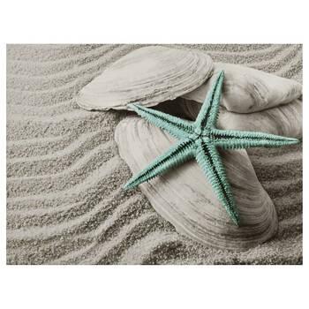 Starfish & Seashells Canvas