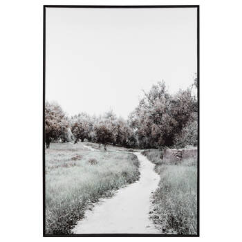 Forest Trail Printed Framed Art