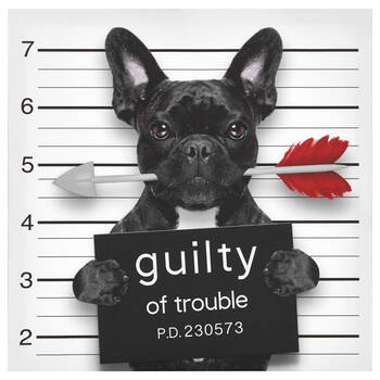 Guilty of Trouble Canvas