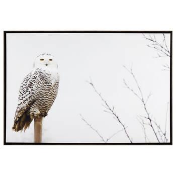 Snow Owl Framed Printed Canvas