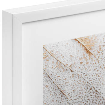 Abstract Leaves Printed Framed Art Under Glass
