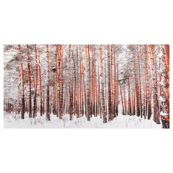 Orange Birch Forest Canvas