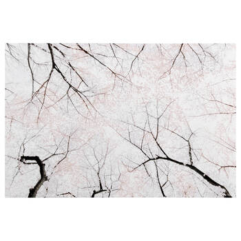 Blossoming Trees Printed Canvas