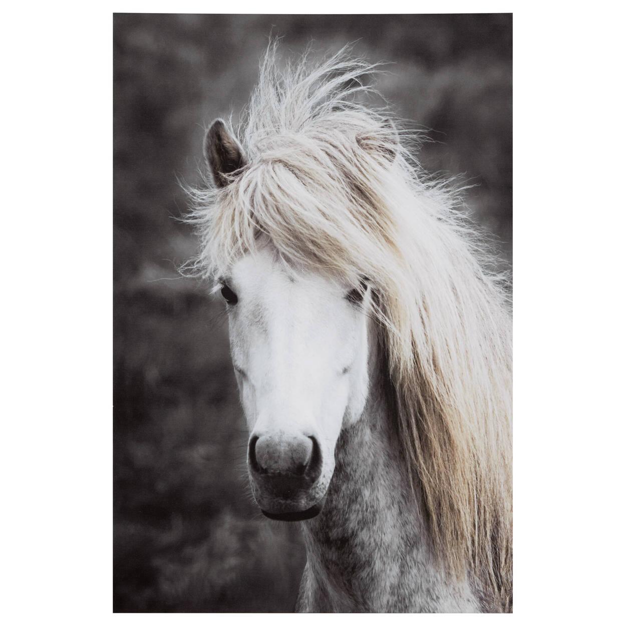 Tableau imprimé d'un cheval à longue crinière