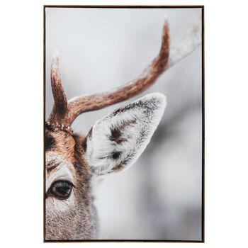 Deer Close-Up Printed Framed Art