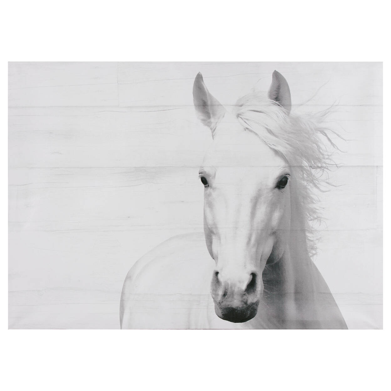 Tableau imprimé cheval sur fond bois