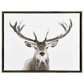 Deer Printed Framed Art