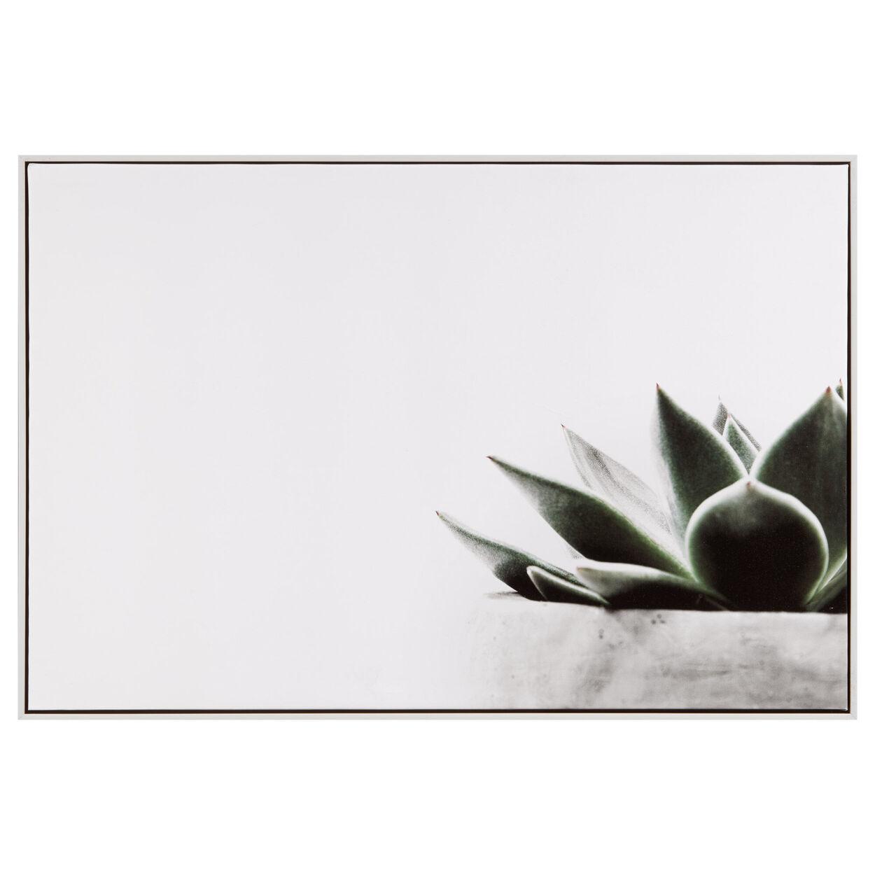 Potted Succulent Printed Framed Art