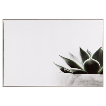 Potted Succulent Printed Framed Art