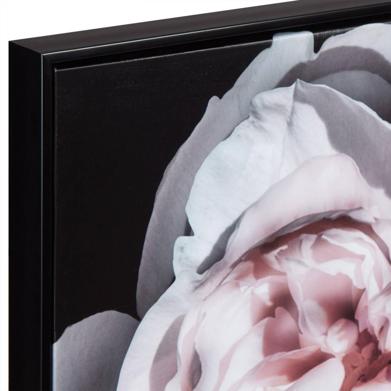 Peony Printed Framed Art