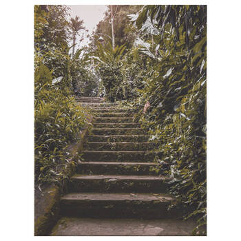 Jungle Pathway Printed Canvas