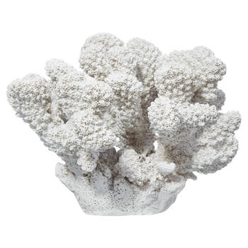 Decorative Coral