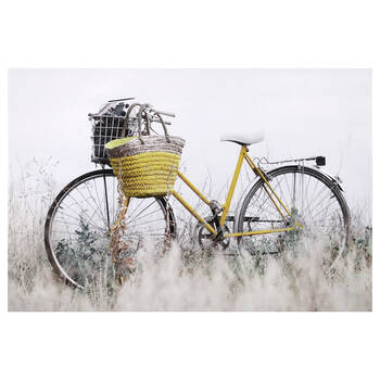 Bicycle Printed Canvas