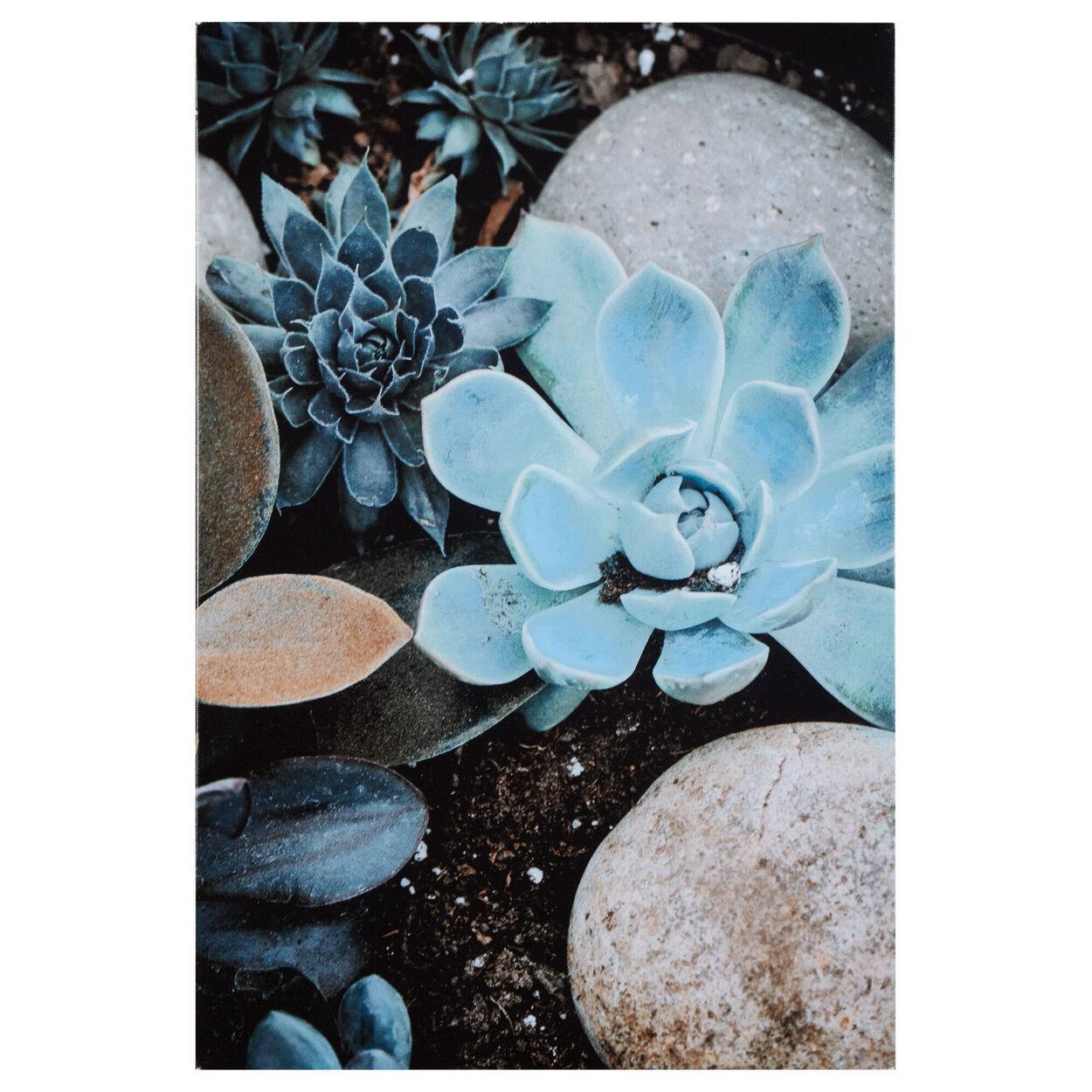 Eucalyptus Rock Garden Printed Canvas