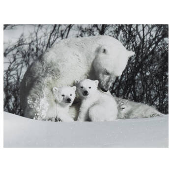 Polar Bears Printed Canvas
