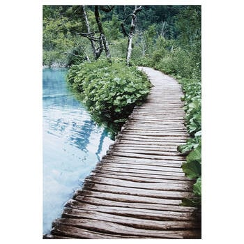 Wooden Pathway Printed Canvas