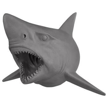 Art mural de requin