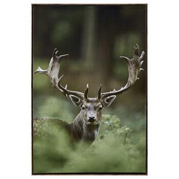 Deer in The Wild Printed Framed Art