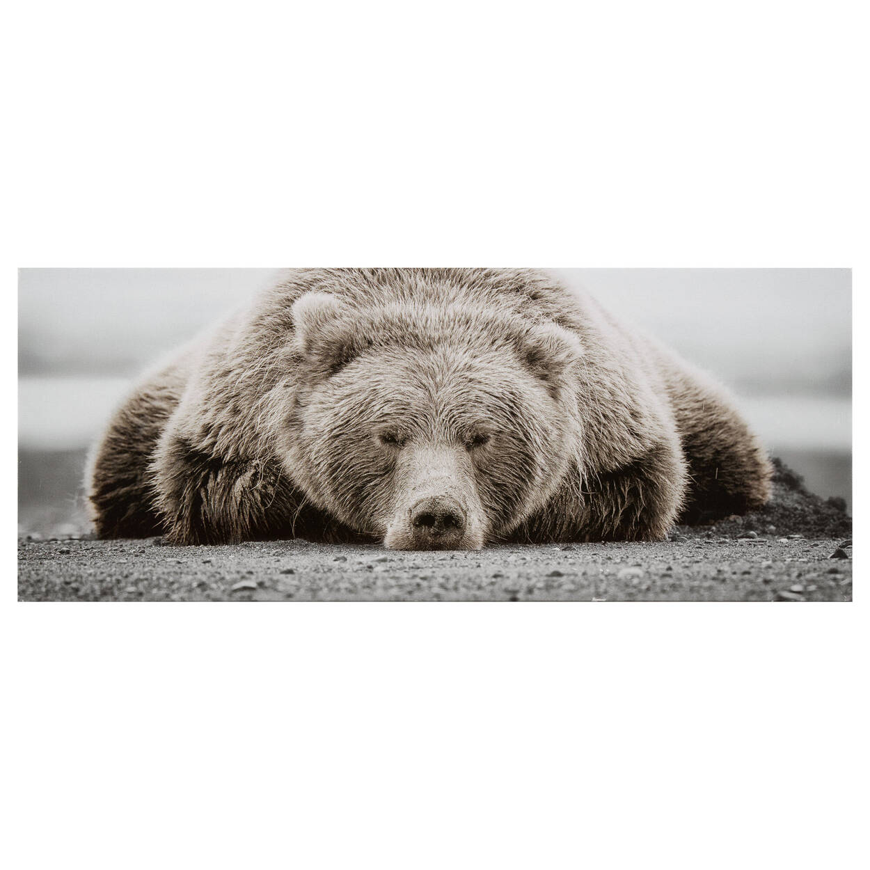 Petit tableau imprimé ours brun
