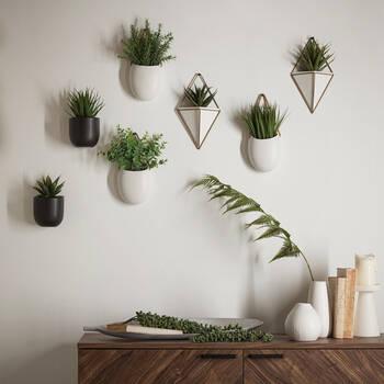 Wall Greenery with Ceramic Pot