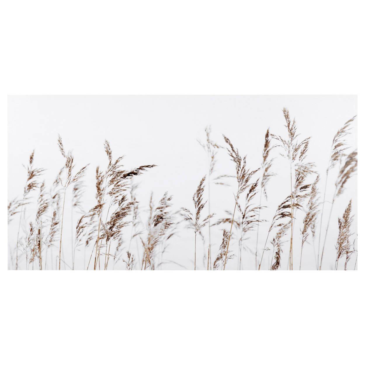 Wheat Field Printed Canvas