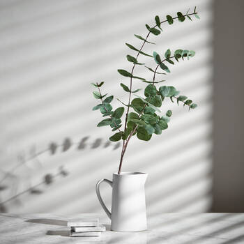 Eucalyptus Artificial Greenery
