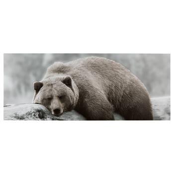 Sleepy Brown Bear Printed Canvas