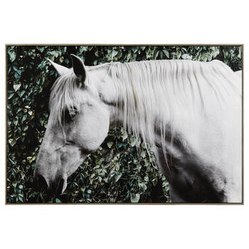 White Horse Framed Printed Canvas