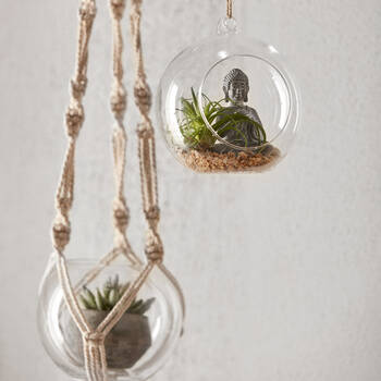 Hanging Terrarium with Buddha