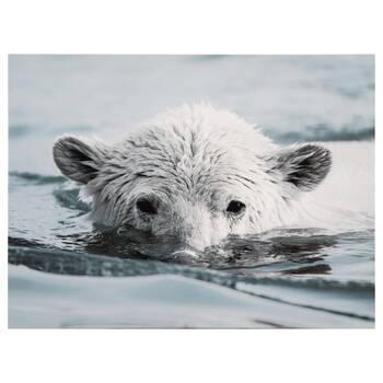 Polar Bear Printed Canvas