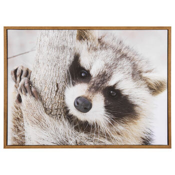 Racoon Printed Framed Art