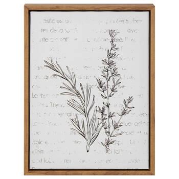 Herbs Framed Art