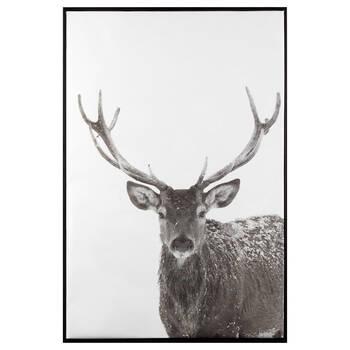 Staring Deer Framed Printed Canvas