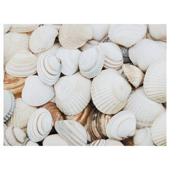 Seashells Printed Canvas