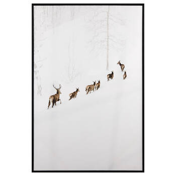 Walking Deers Printed Canvas