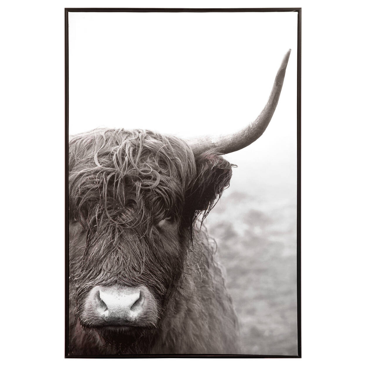 Bull Printed Framed Art