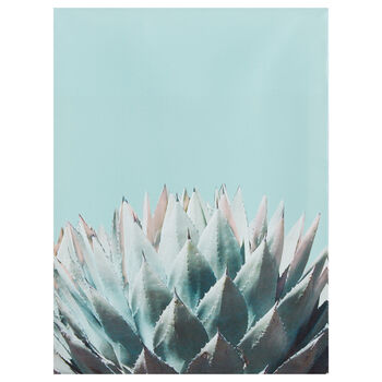 Succulent Printed Canvas