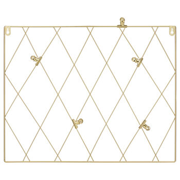 Metal Wire Panel with Clips