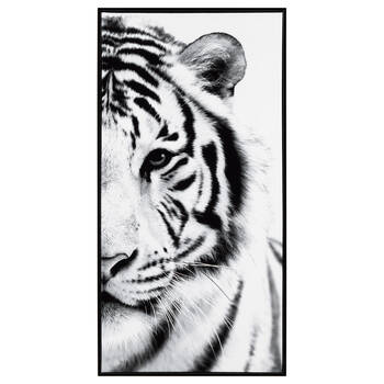 White Tiger Framed Art