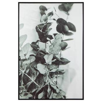 Eucalyptus Framed Printed Canvas