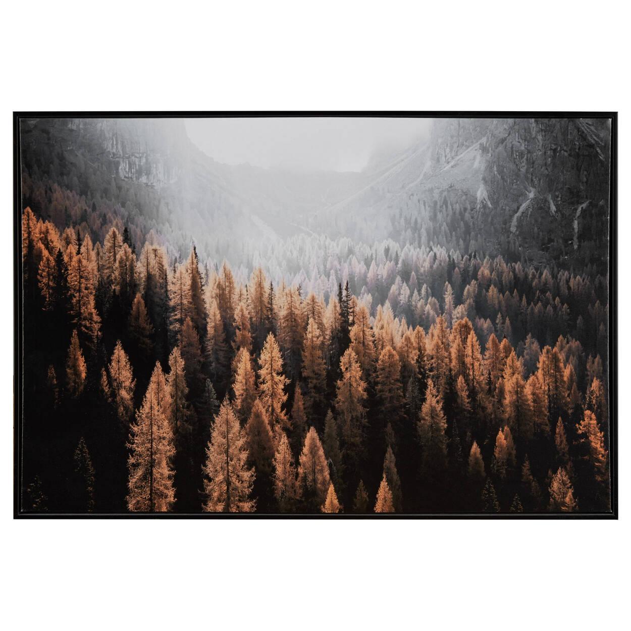 Autumn Forest Printed Framed Art